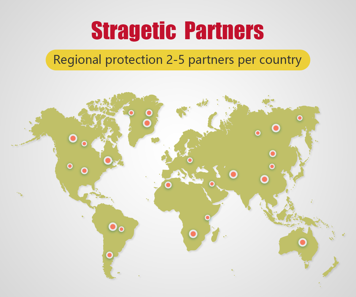 Stragetic Partners
